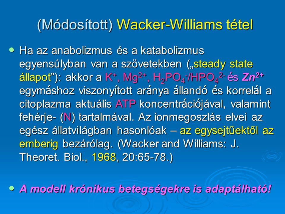 """(Módosított) Wacker-Williams tétel Ha az anabolizmus és a katabolizmus egyensúlyban van a szövetekben (""""steady state állapot""""): akkor a K +, Mg 2+, H"""