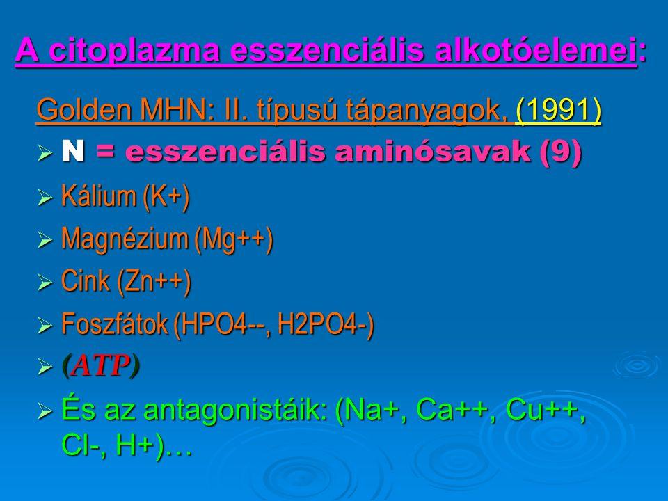 A citoplazma esszenciális alkotóelemei: Golden MHN: II. típusú tápanyagok, (1991)  N = esszenciális aminósavak (9)  Kálium (K+)  Magnézium (Mg++) 