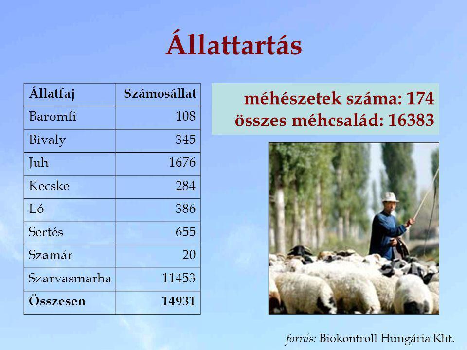 Állattartás ÁllatfajSzámosállat Baromfi108 Bivaly345 Juh1676 Kecske284 Ló386 Sertés655 Szamár20 Szarvasmarha11453 Összesen14931 méhészetek száma: 174