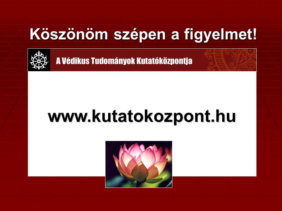 Köszönöm szépen a figyelmet! Köszönöm szépen a figyelmet! www.kutatokozpont.hu