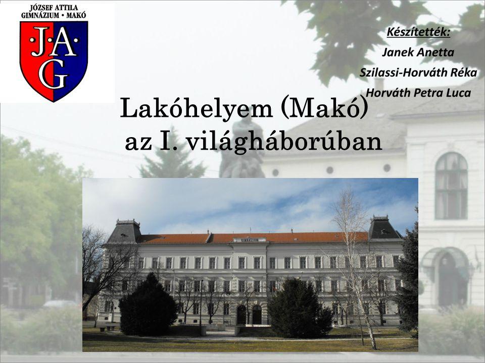 -Csanád vármegye a szomszédos alföldi és bánáti vármegyékkel alkotta a VII.