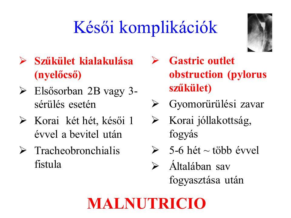 Késői komplikációk  Szűkület kialakulása (nyelőcső)  Elsősorban 2B vagy 3- sérülés esetén  Korai két hét, késői 1 évvel a bevitel után  Tracheobro