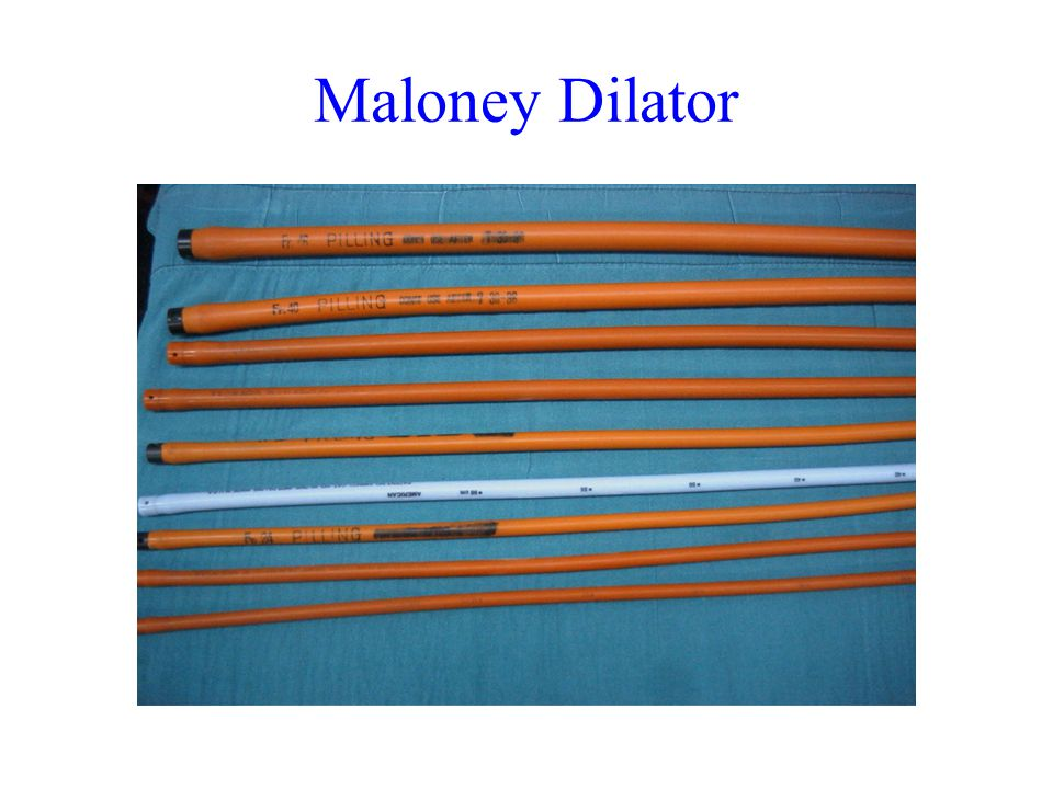 Maloney Dilator
