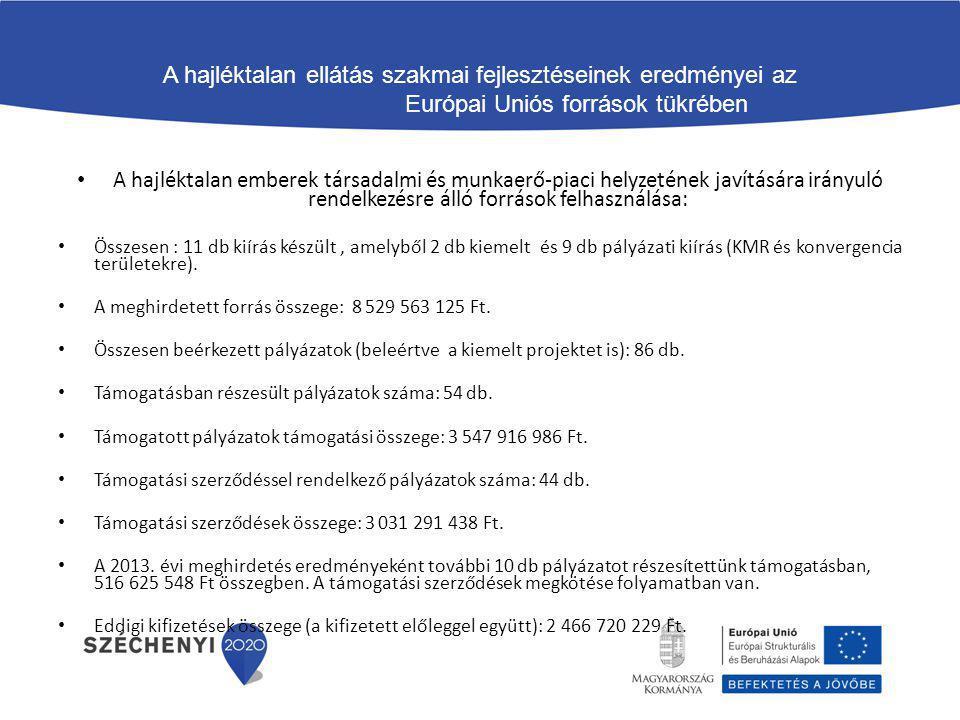 A hajléktalan ellátás szakmai fejlesztéseinek eredményei az Európai Uniós források tükrében A hajléktalan emberek társadalmi és munkaerő-piaci helyzet