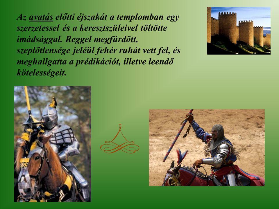 20-22 éves korára már birtokában volt a hét lovagi készségnek mint a lovaglás, úszás, nyilazás, vívás, vadászat, sakkozás és éneklés. A felkészült ifj