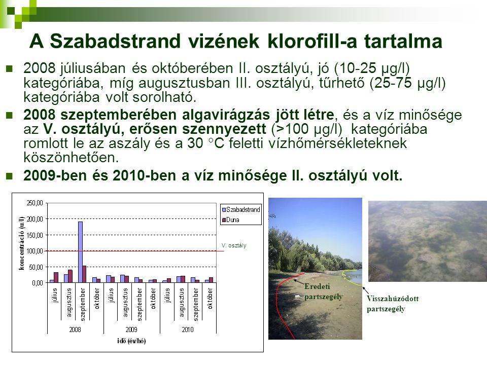 A Szabadstrand vizének klorofill-a tartalma 2008 júliusában és októberében II. osztályú, jó (10-25 μg/l) kategóriába, míg augusztusban III. osztályú,