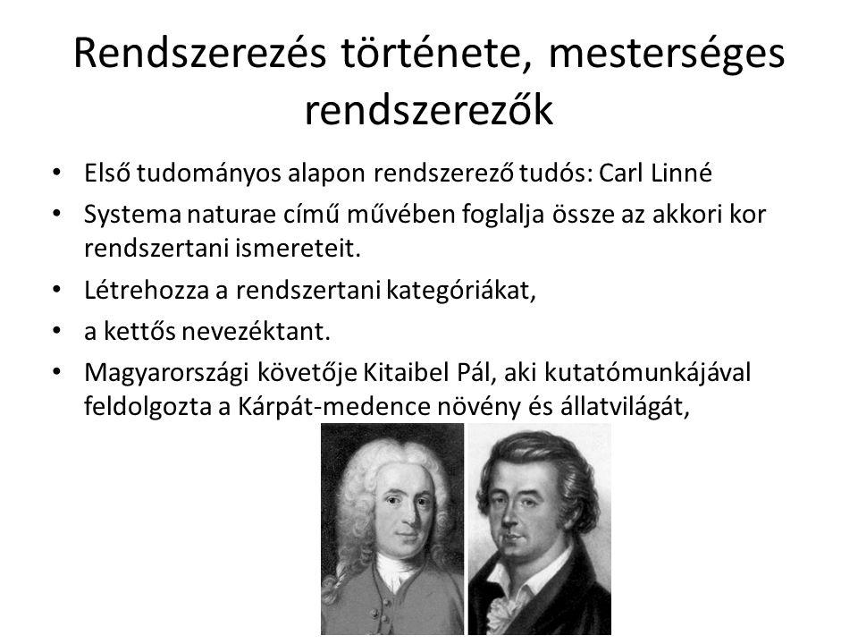 Rendszerezés története, mesterséges rendszerezők Első tudományos alapon rendszerező tudós: Carl Linné Systema naturae című művében foglalja össze az akkori kor rendszertani ismereteit.