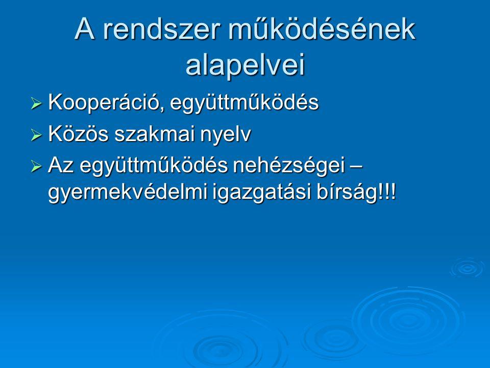 A rendszer működésének alapelvei  Kooperáció, együttműködés  Közös szakmai nyelv  Az együttműködés nehézségei – gyermekvédelmi igazgatási bírság!!!