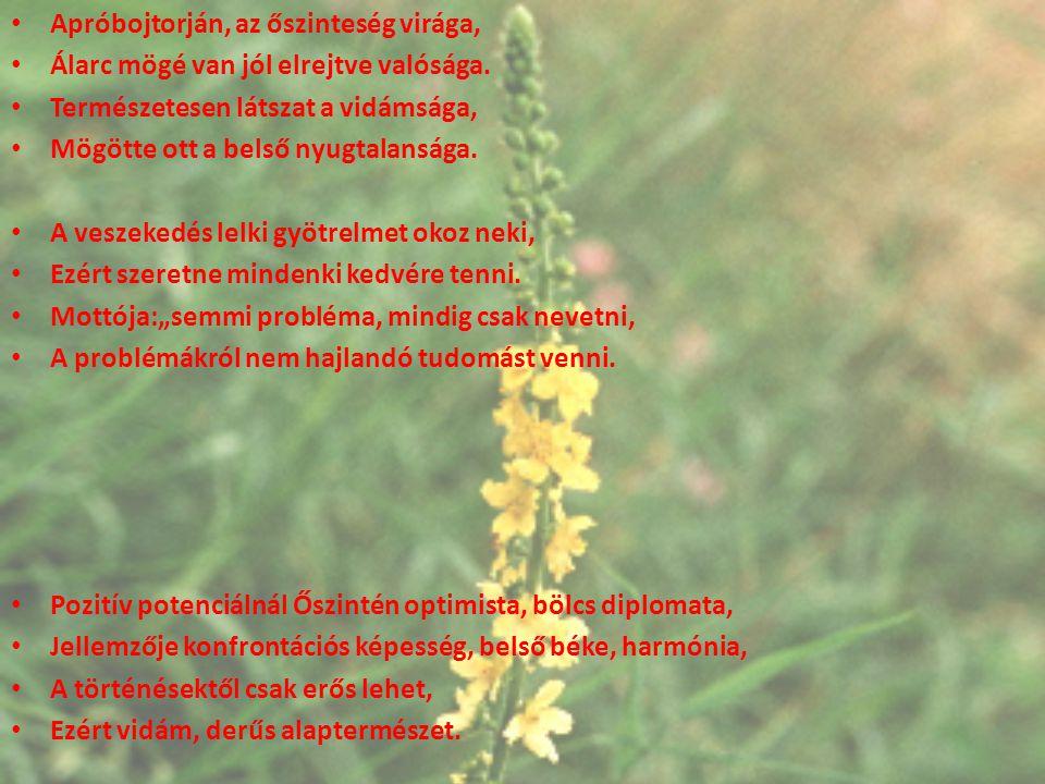 Apróbojtorján, az őszinteség virága, Álarc mögé van jól elrejtve valósága. Természetesen látszat a vidámsága, Mögötte ott a belső nyugtalansága. A ves