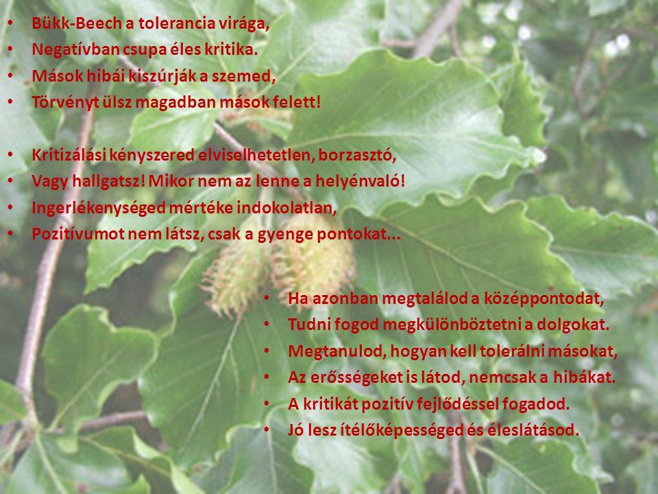 Bükk-Beech a tolerancia virága, Negatívban csupa éles kritika. Mások hibái kiszúrják a szemed, Törvényt ülsz magadban mások felett! Kritizálási kénysz