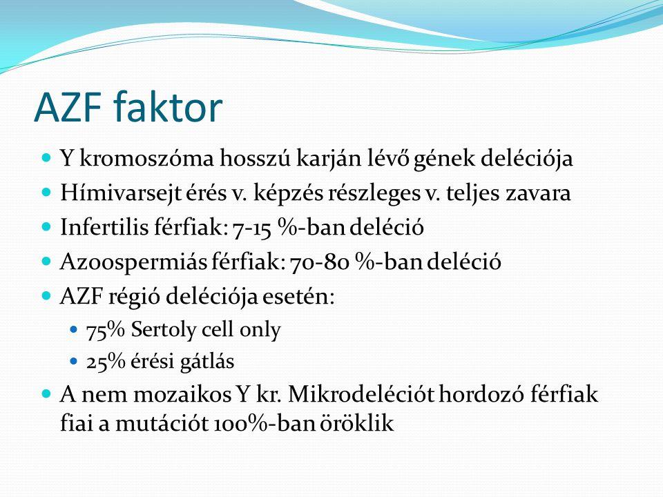 AZF faktor Y kromoszóma hosszú karján lévő gének deléciója Hímivarsejt érés v. képzés részleges v. teljes zavara Infertilis férfiak: 7-15 %-ban deléci
