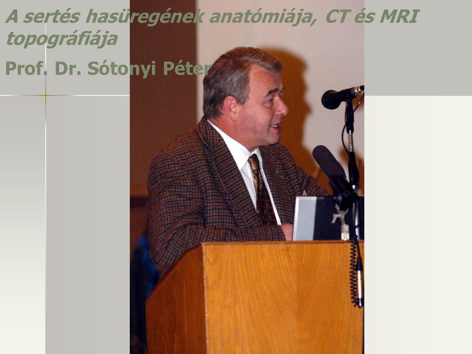 A sertés hasüregének anatómiája, CT és MRI topográfiája Prof. Dr. Sótonyi Péter