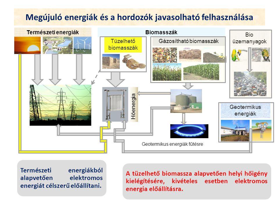 Megújuló energiák és a hordozók javasolható felhasználása Természeti energiákból alapvetően elektromos energiát célszerű előállítani. A tüzelhető biom