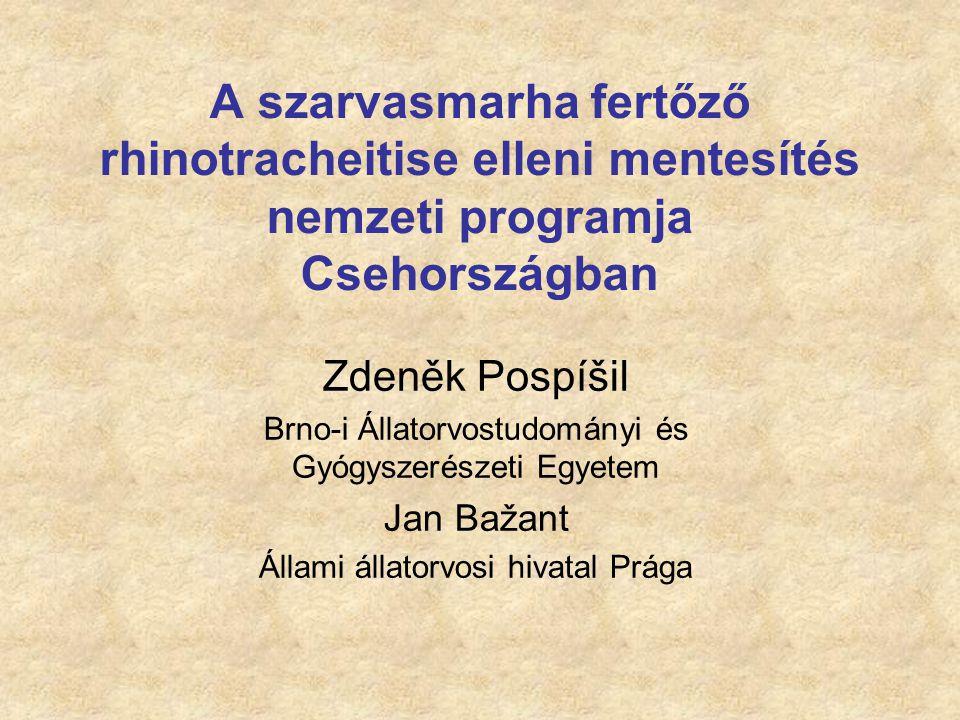 A védőoltások első tesztelése a Cseh Köztársaságban 1/2 Cél: IBR negatív bikák tenyésztése a szerológiailag pozitív tenyészetekben (1979) Inaktivált oltóanyag BORINAK (Bioveta Nitra – korábban Csehországban, jelenleg Szlovákiában) A teljes IBR vírust tartalmazta Nem volt lehetséges a posztinfekciós és posztvakcinációs ellenanyag megkülönböztetése