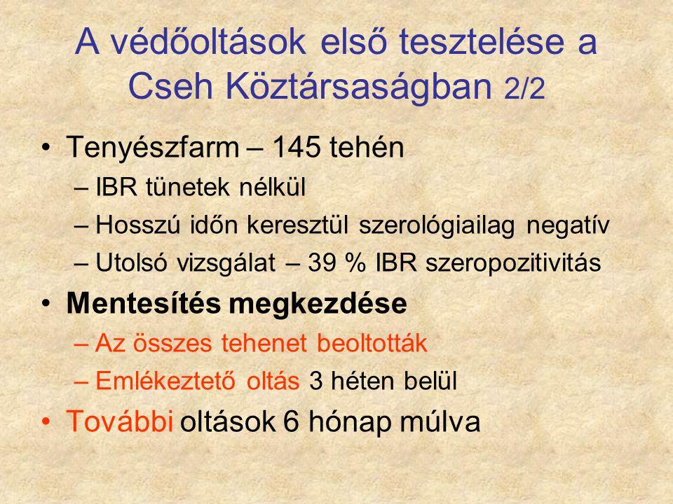 A védőoltások első tesztelése a Cseh Köztársaságban 2/2 Tenyészfarm – 145 tehén –IBR tünetek nélkül –Hosszú időn keresztül szerológiailag negatív –Uto