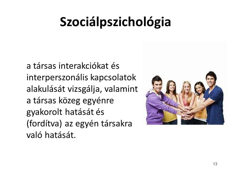 Szociálpszichológia a társas interakciókat és interperszonális kapcsolatok alakulását vizsgálja, valamint a társas közeg egyénre gyakorolt hatását és