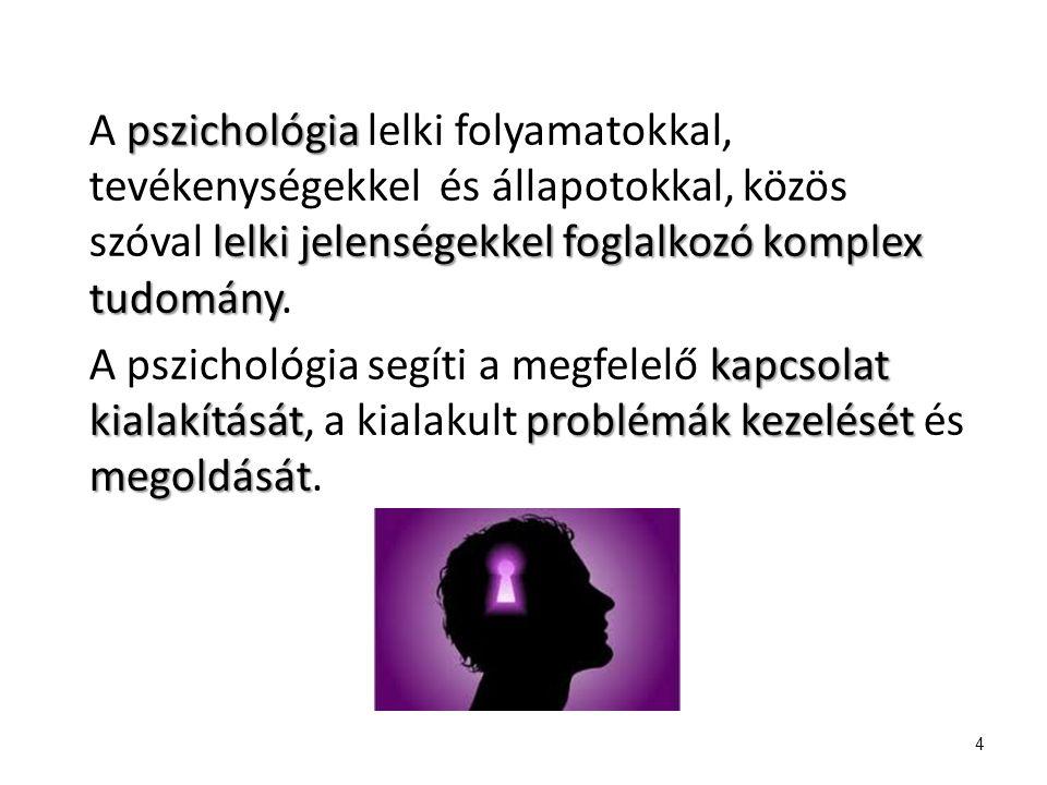 pszichológia lelki jelenségekkel foglalkozó komplex tudomány A pszichológia lelki folyamatokkal, tevékenységekkel és állapotokkal, közös szóval lelki