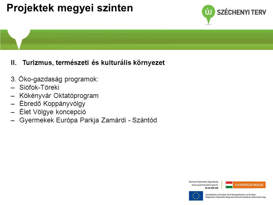 Projektek megyei szinten II.Turizmus, természeti és kulturális környezet 3.