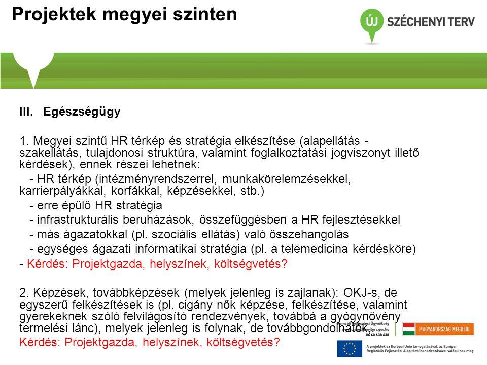 Projektek megyei szinten III. Egészségügy 1. Megyei szintű HR térkép és stratégia elkészítése (alapellátás - szakellátás, tulajdonosi struktúra, valam