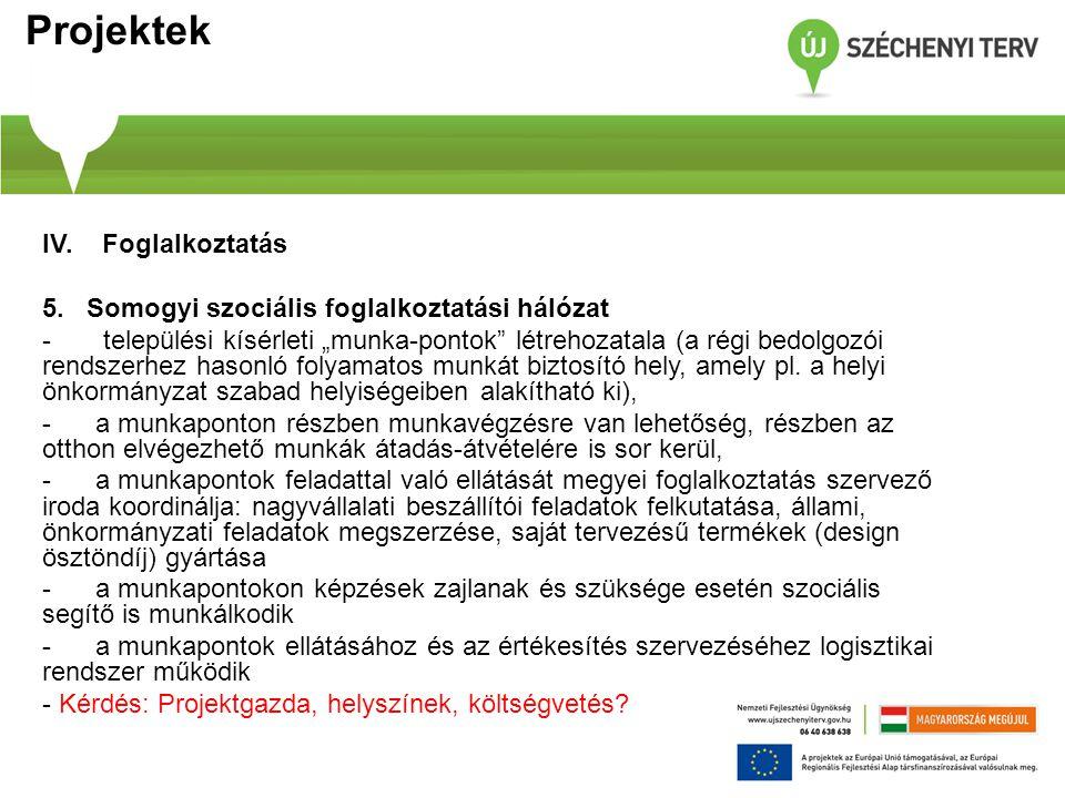 """Projektek IV. Foglalkoztatás 5. Somogyi szociális foglalkoztatási hálózat - települési kísérleti """"munka-pontok"""" létrehozatala (a régi bedolgozói rends"""