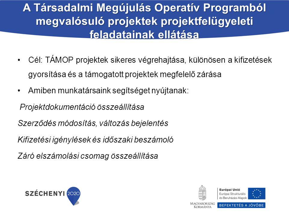 A Társadalmi Megújulás Operatív Programból megvalósuló projektek projektfelügyeleti feladatainak ellátása Cél: TÁMOP projektek sikeres végrehajtása, k