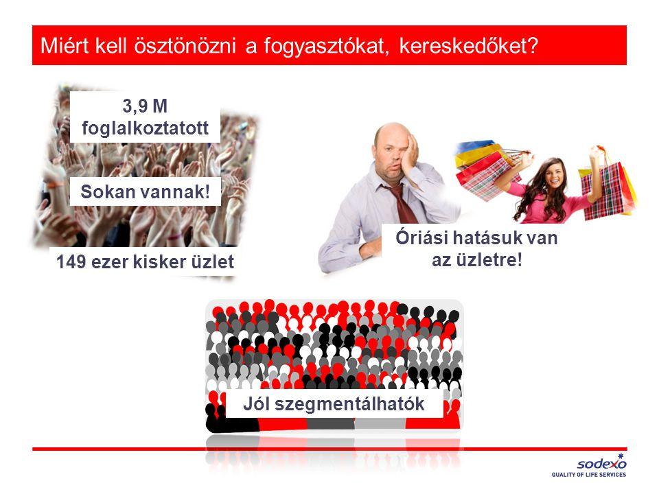 Miért kell ösztönözni a fogyasztókat, kereskedőket? Sokan vannak! 3,9 M foglalkoztatott 149 ezer kisker üzlet Óriási hatásuk van az üzletre! Jól szegm