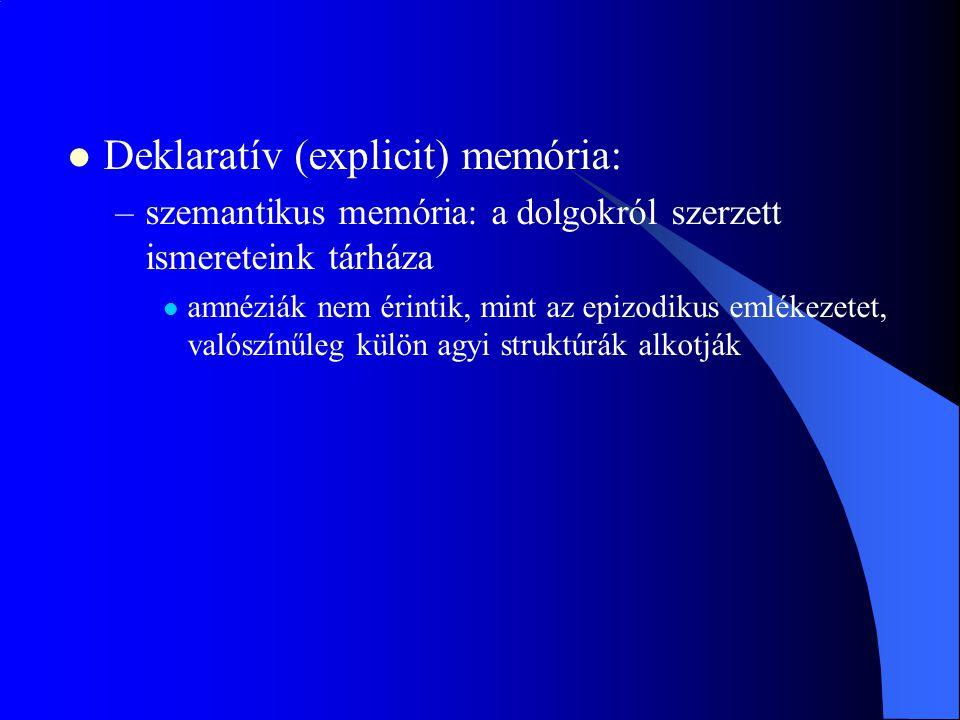 Deklaratív (explicit) memória: –szemantikus memória: a dolgokról szerzett ismereteink tárháza amnéziák nem érintik, mint az epizodikus emlékezetet, va