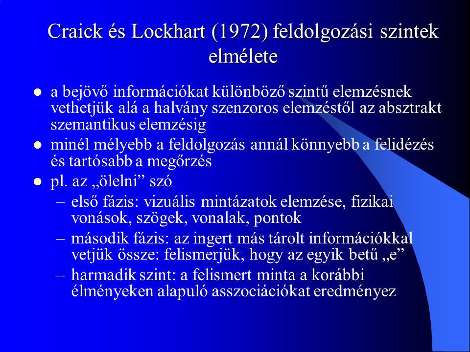 Craick és Lockhart (1972) feldolgozási szintek elmélete a bejövő információkat különböző szintű elemzésnek vethetjük alá a halvány szenzoros elemzéstő