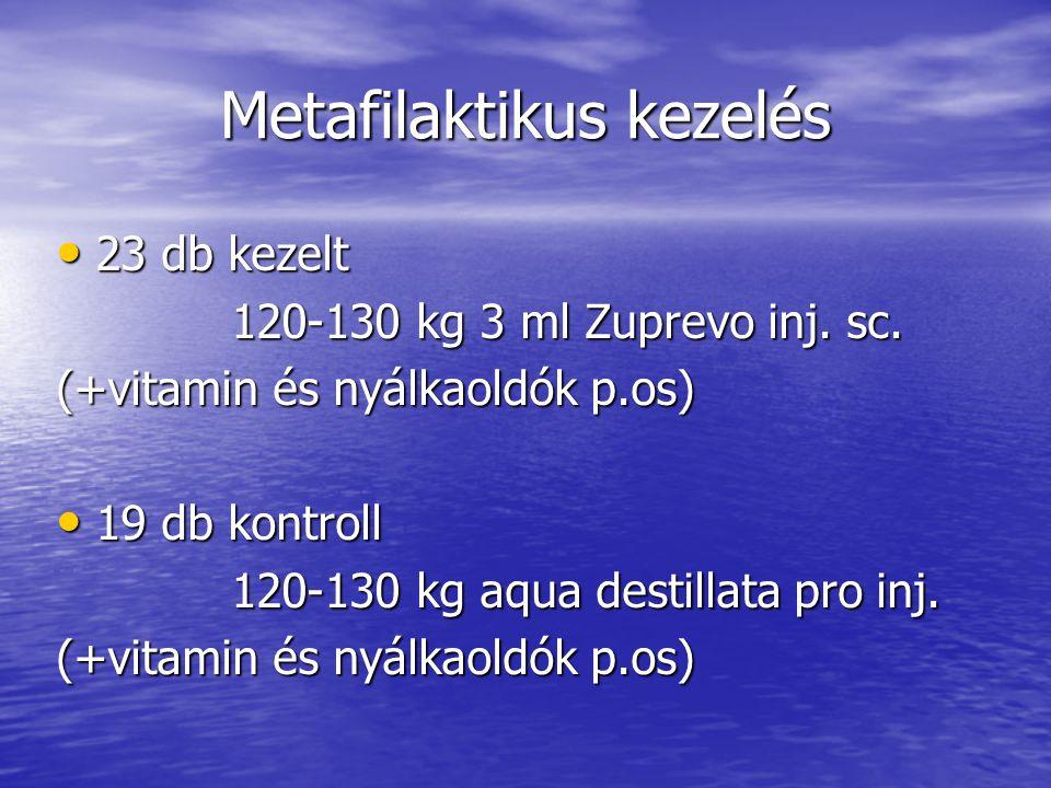 Metafilaktikus kezelés 23 db kezelt 23 db kezelt 120-130 kg 3 ml Zuprevo inj. sc. 120-130 kg 3 ml Zuprevo inj. sc. (+vitamin és nyálkaoldók p.os) 19 d