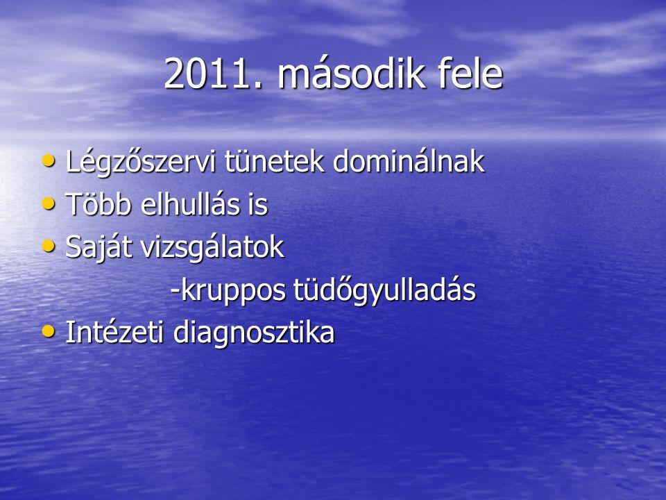 2011. második fele Légzőszervi tünetek dominálnak Légzőszervi tünetek dominálnak Több elhullás is Több elhullás is Saját vizsgálatok Saját vizsgálatok