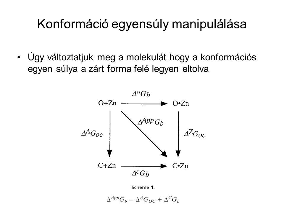 Konformáció egyensúly manipulálása Úgy változtatjuk meg a molekulát hogy a konformációs egyen súlya a zárt forma felé legyen eltolva