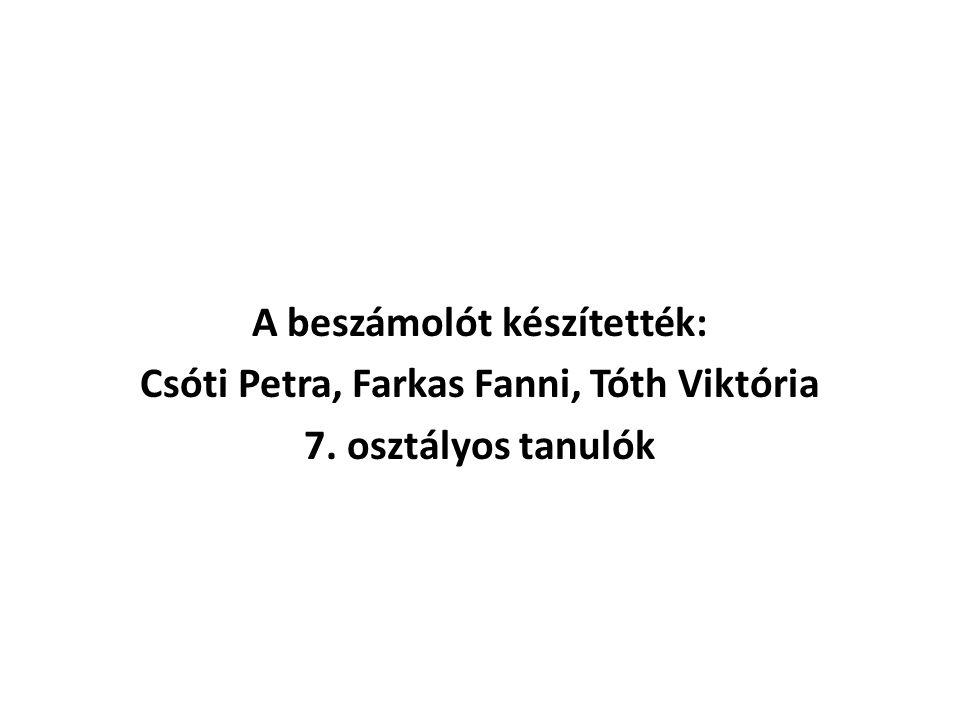 A beszámolót készítették: Csóti Petra, Farkas Fanni, Tóth Viktória 7. osztályos tanulók