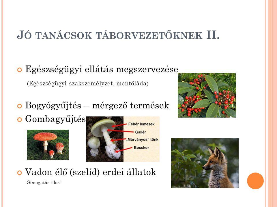 J Ó TANÁCSOK TÁBORVEZETŐKNEK II.