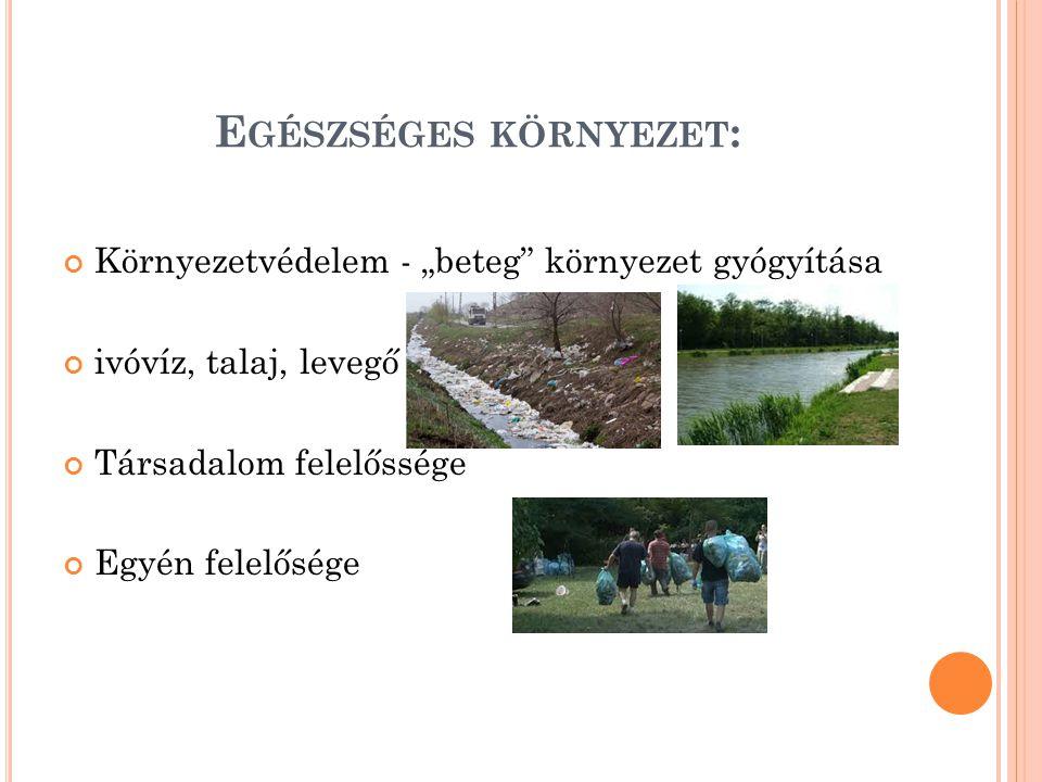 """E GÉSZSÉGES KÖRNYEZET : Környezetvédelem - """"beteg környezet gyógyítása ivóvíz, talaj, levegő Társadalom felelőssége Egyén felelősége"""