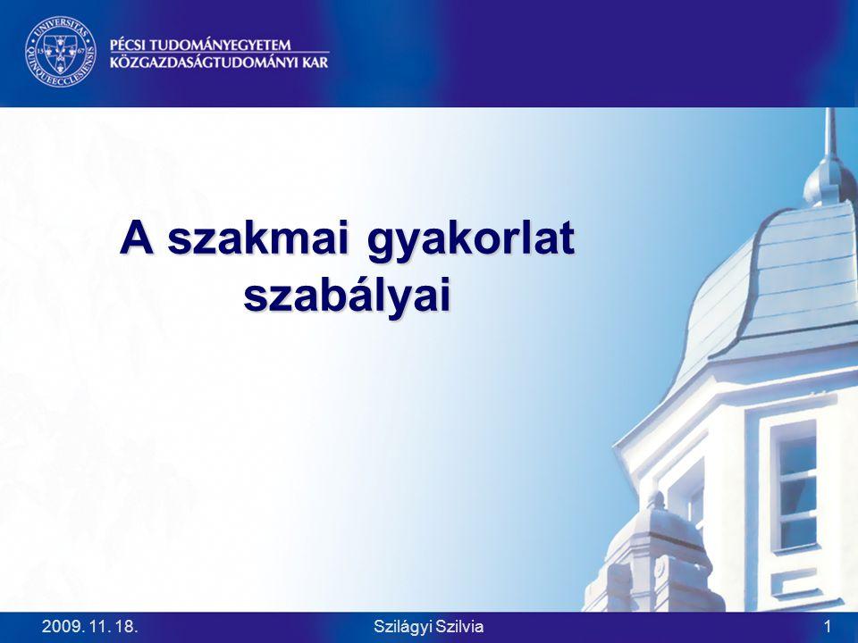 2009.11. 18.Szilágyi Szilvia2 A szakmai gyakorlat alapvető keretei  FTV.