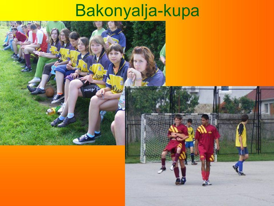 Bakonyalja-kupa