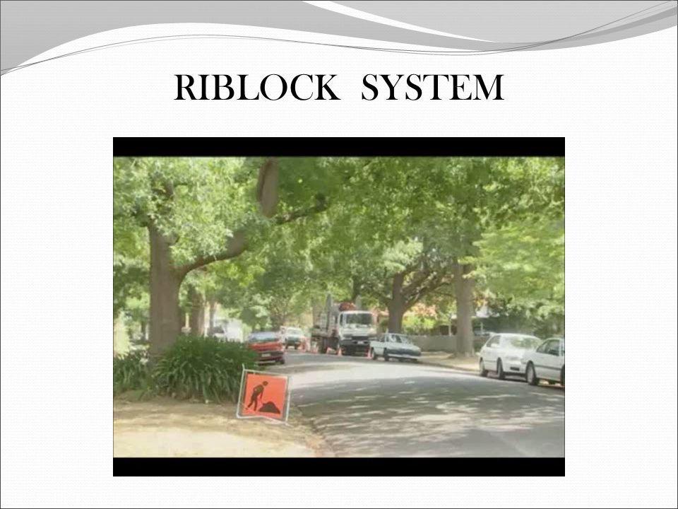RIBLOCK SYSTEM