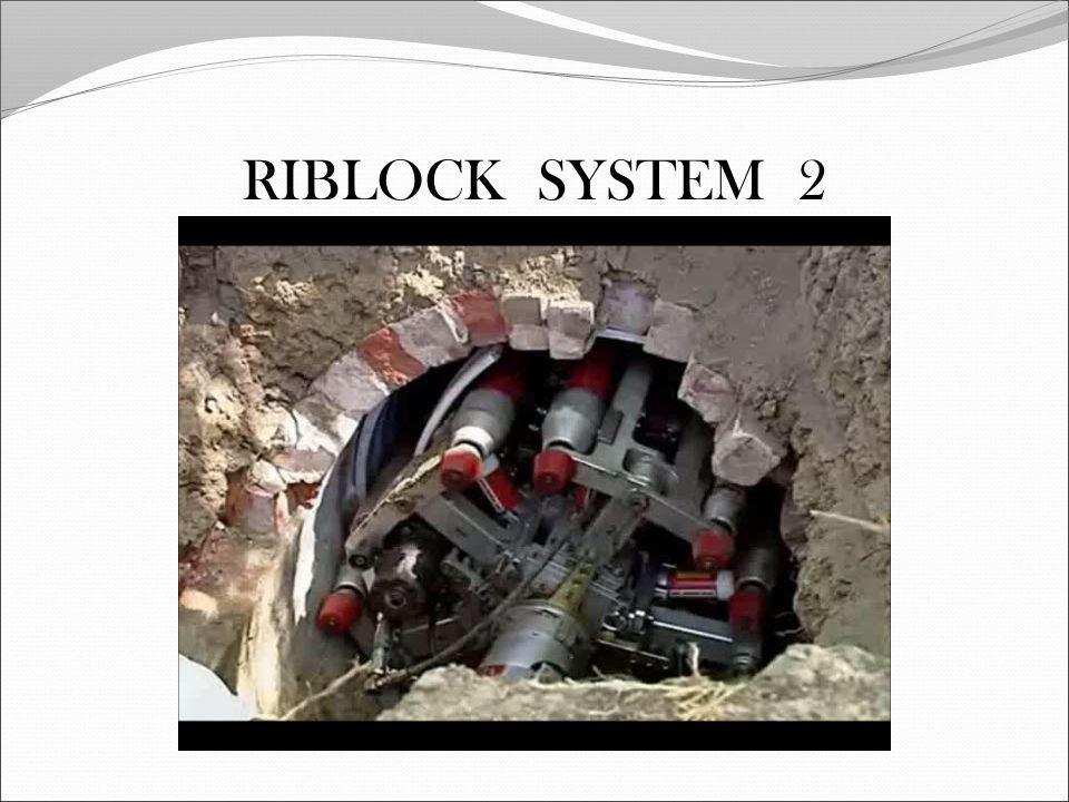 RIBLOCK SYSTEM 2