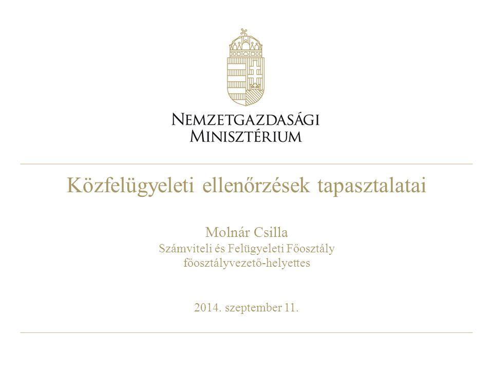 Közfelügyeleti ellenőrzések tapasztalatai Molnár Csilla Számviteli és Felügyeleti Főosztály főosztályvezető-helyettes 2014. szeptember 11.
