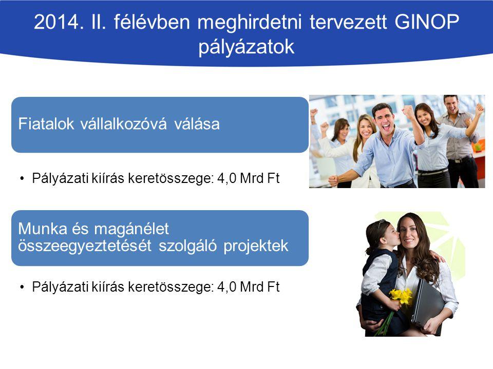 2014. II. félévben meghirdetni tervezett GINOP pályázatok Fiatalok vállalkozóvá válása Pályázati kiírás keretösszege: 4,0 Mrd Ft Munka és magánélet ös