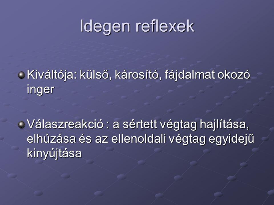 Idegen reflexek Kiváltója: külső, károsító, fájdalmat okozó inger Válaszreakció : a sértett végtag hajlítása, elhúzása és az ellenoldali végtag egyidejű kinyújtása