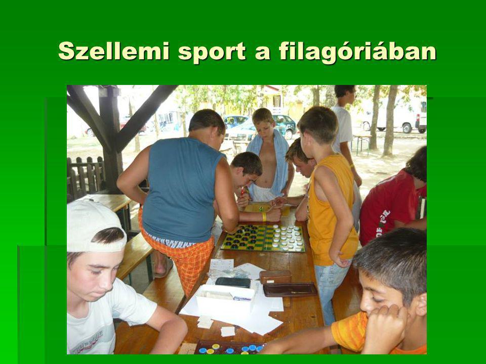 Szellemi sport a filagóriában