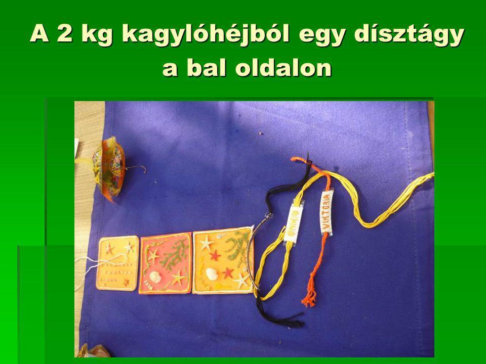 A 2 kg kagylóhéjból egy dísztágy a bal oldalon