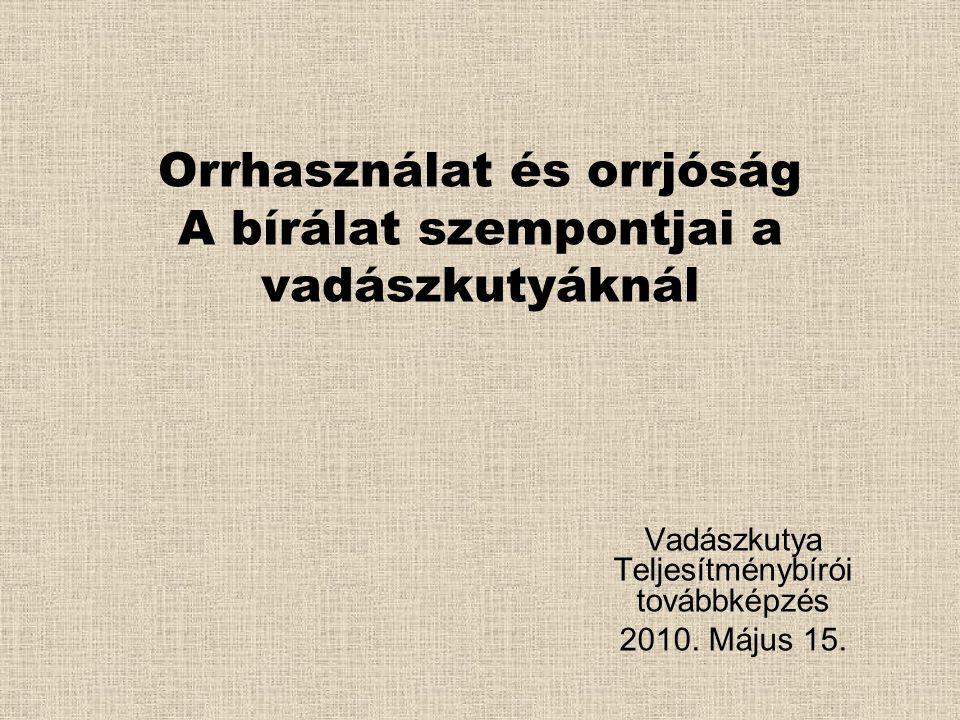 Orrhasználat és orrjóság A bírálat szempontjai a vadászkutyáknál Vadászkutya Teljesítménybírói továbbképzés 2010. Május 15.