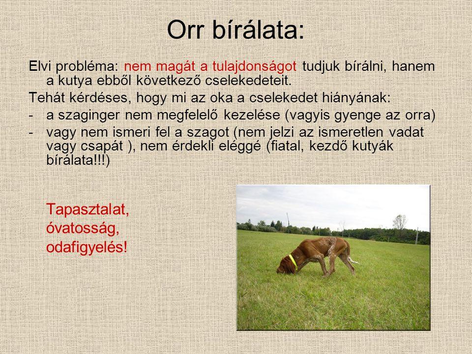 Orr bírálata: Elvi probléma: nem magát a tulajdonságot tudjuk bírálni, hanem a kutya ebből következő cselekedeteit. Tehát kérdéses, hogy mi az oka a c