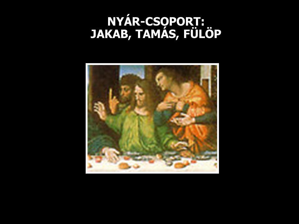 NYÁR-CSOPORT: JAKAB, TAMÁS, FÜLÖP