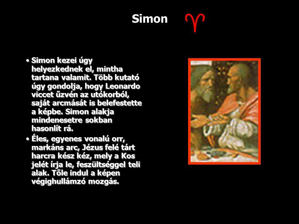 Simon Simon kezei úgy helyezkednek el, mintha tartana valamit. Több kutató úgy gondolja, hogy Leonardo viccet űzvén az utókorból, saját arcmását is be