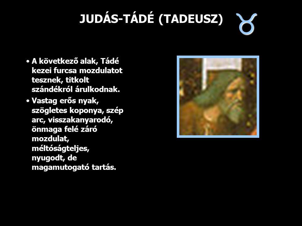 JUDÁS-TÁDÉ (TADEUSZ) A következő alak, Tádé kezei furcsa mozdulatot tesznek, titkolt szándékról árulkodnak. Vastag erős nyak, szögletes koponya, szép
