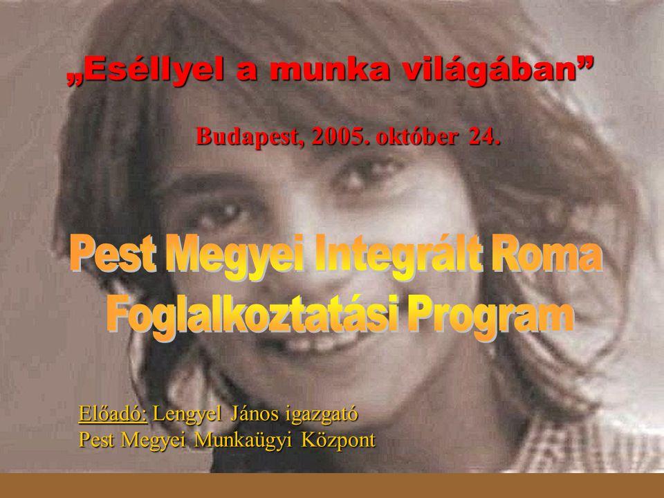 Előadó: Lengyel János igazgató Pest Megyei Munkaügyi Központ Budapest, 2005.