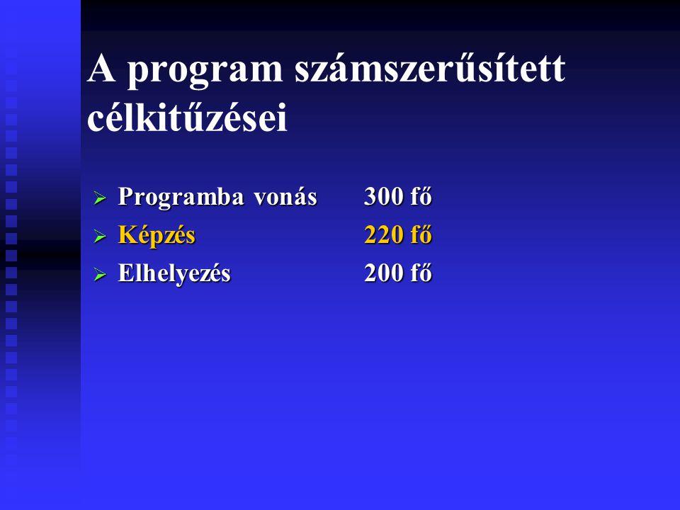 A program számszerűsített célkitűzései  Programba vonás300 fő  Képzés220 fő  Elhelyezés200 fő